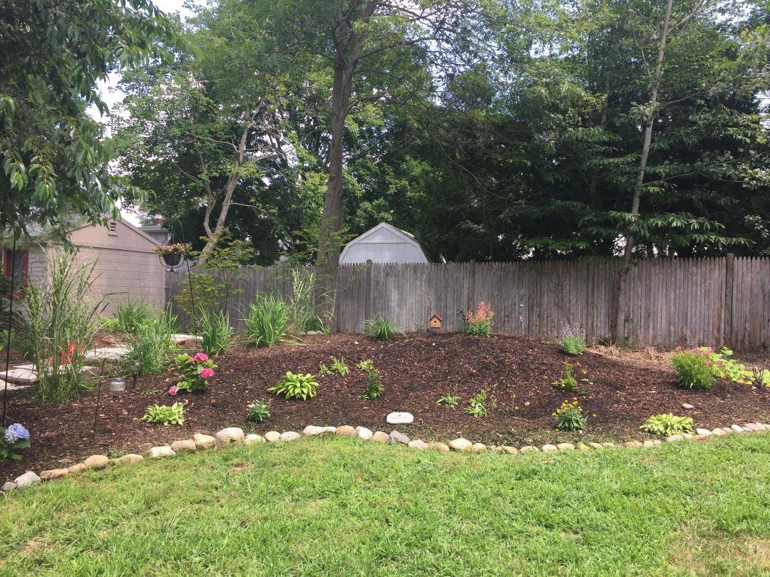 braden garden